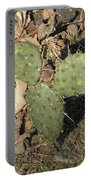 Mickey Mouse Cactus Portable Battery Charger