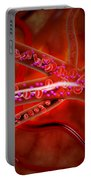 Microscopic View Of Medicine Portable Battery Charger