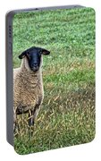 Middle Child - Blackfaced Sheep Portable Battery Charger