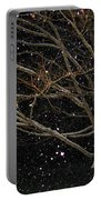 Midnight Snow Portable Battery Charger