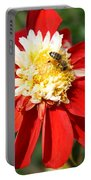 Midsummer Beauty Portable Battery Charger