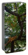 Mighty Fall Oak #2 Portable Battery Charger