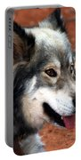 Miley The Husky With Blue And Brown Eyes Portable Battery Charger by Doc Braham