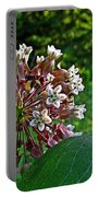 Milkweed Flowers And Leaves Portable Battery Charger