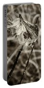 Milkweed Pod Sepia Portable Battery Charger