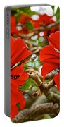 Milkwood Tree Blossoms In Donkin Reserve In Port Elizabeth-south Africa Portable Battery Charger
