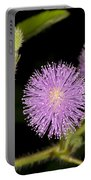 Mimosa Pudica  Portable Battery Charger