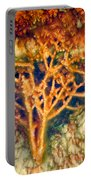 Mineral Branches Hot Springs Portable Battery Charger