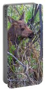 Mini Moose Portable Battery Charger