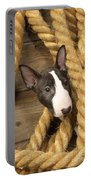 Miniature Bull Terrier Puppy Portable Battery Charger