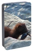Mink With A Round Goby Portable Battery Charger