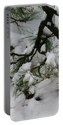Minnesota Bonsai Portable Battery Charger