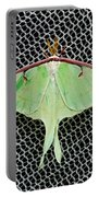 Mint Green Luna Moth Portable Battery Charger