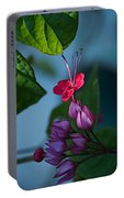 Miracle Vine Portable Battery Charger