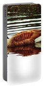 Mirrored Goose Portable Battery Charger