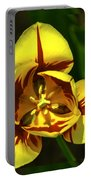 Mirrored Tulip Time Portable Battery Charger