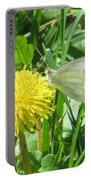 Miss Busy Butterfly Portable Battery Charger
