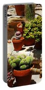 Mission Cactus Garden Portable Battery Charger