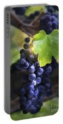 Mission Grapes II Portable Battery Charger