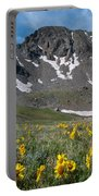 Missouri Mountain And Wildflower Landscape Portable Battery Charger