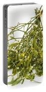 Mistletoe Portable Battery Charger