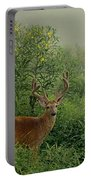 Misty Morning Deer Portable Battery Charger