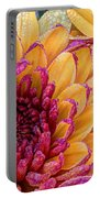 Misty Morning Dew  Portable Battery Charger