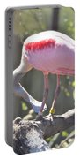 Misty Morning Spoonbill Portable Battery Charger
