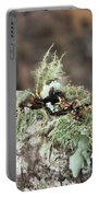 Misty Moss Portable Battery Charger