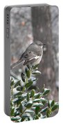 Mockingbird Cold Portable Battery Charger