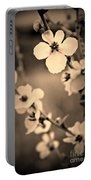 Modern Beauty Portable Battery Charger