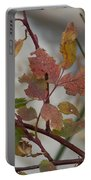 Molting Leaves  Portable Battery Charger