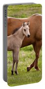 Mom And Foal 2 Portable Battery Charger