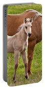 Mom And Foal Portable Battery Charger