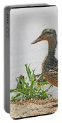 Momma Duck And Baby With A Different View Portable Battery Charger