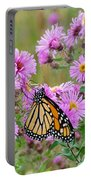 Monarch 1 Portable Battery Charger