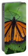 Monarch 3 Portable Battery Charger