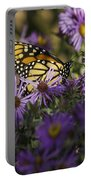 Monarch And Asters Portable Battery Charger