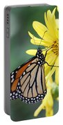 Monarch Beauty Portable Battery Charger