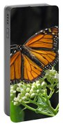 Monarch Butterfly 60 Portable Battery Charger