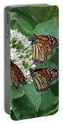 Monarch Butterfly 64 Portable Battery Charger