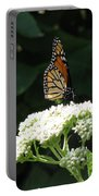 Monarch Butterfly 71 Portable Battery Charger