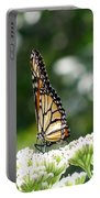 Monarch Butterfly 72 Portable Battery Charger