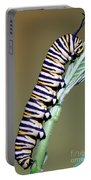 Monarch Butterfly Caterpillar Portable Battery Charger
