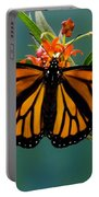 Monarch Butterfly Danaus Plexippus Portable Battery Charger