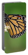 Monarch Butterfly On White Milkweed Flower Portable Battery Charger