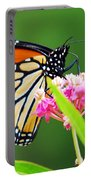 Monarch Butterfly Simple Pleasure Portable Battery Charger