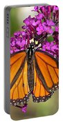 Monarch Hangs On To Buddleia Portable Battery Charger