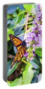 Monarch II Portable Battery Charger