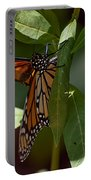 Monarch In The Shade Portable Battery Charger